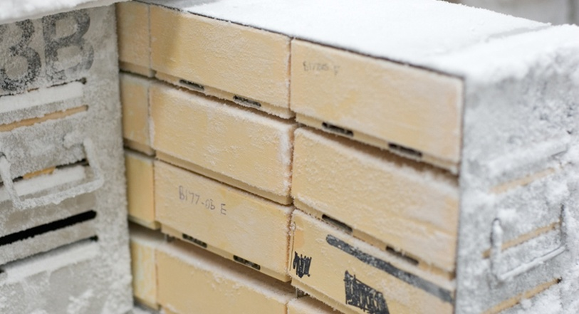 Freezer-storing-samples.jpg