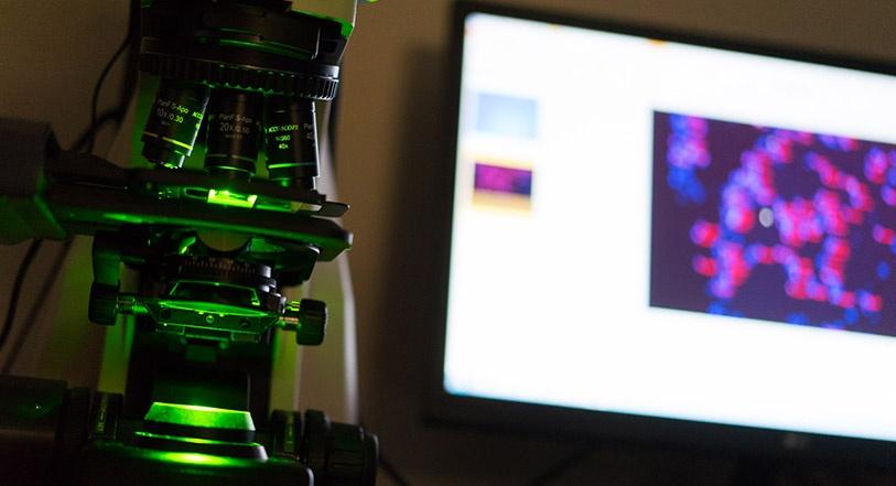 microscope-and-pathology-slide-on-screen.jpg